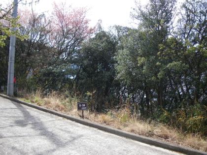 里山の風景が広がります